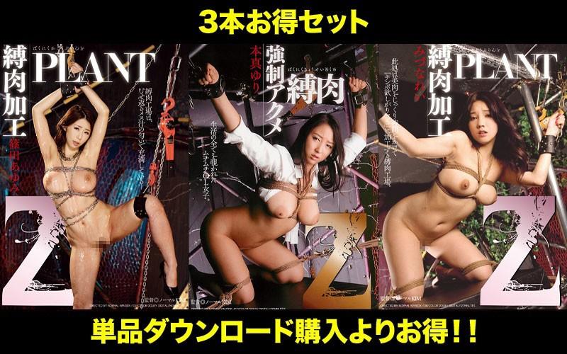 [Profitable Set] Get Out All At Once! !! Z Tied Meat Series Yuri Honma Ayumi Shinoda Rei Mizuna